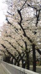 菊池隆志 公式ブログ/『テクテク♪o(^-^)o 』 画像2