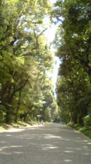 菊池隆志 公式ブログ/『明治神宮♪o(^-^)o 』 画像3