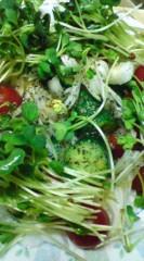 菊池隆志 公式ブログ/『野菜サラダぁ♪o(^-^)o 』 画像3