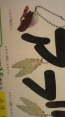 菊池隆志 公式ブログ/『ノンフライアブラゼミ!?( ゜_゜) 』 画像2