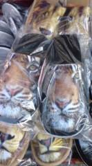 菊池隆志 公式ブログ/『獅子ッパ♪虎ッパ♪(  ̄▽ ̄)』 画像1