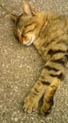 菊池隆志 公式ブログ/『寝顔満点♪o(^-^)o 』 画像1