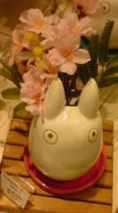 菊池隆志 公式ブログ/『ジブリプランター!?o(^-^)o 』 画像3