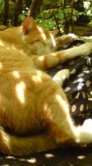 菊池隆志 公式ブログ/『ベッドの上で♪o(^-^)o 』 画像3