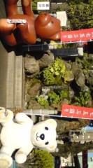 菊池隆志 公式ブログ/『狛熊!?(゜ _゜)』 画像1