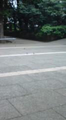 菊池隆志 公式ブログ/『無理ですって(^_^;) 』 画像2