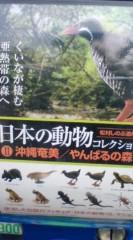 菊池隆志 公式ブログ/『沖縄奄美の動物フィギュア♪』 画像1