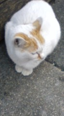 菊池隆志 公式ブログ/『ジッと♪o(^-^)o 』 画像1