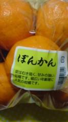 菊池隆志 公式ブログ/『ぽんかんo(^-^)o 』 画像1