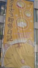 菊池隆志 公式ブログ/『まんまるネコ!?o(^-^)o 』 画像1