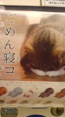 菊池隆志 公式ブログ/『ごめん寝こ♪o(^-^)o 』 画像1