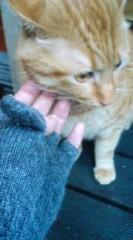 菊池隆志 公式ブログ/『招き猫!?o(^-^)o 』 画像1