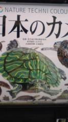 菊池隆志 公式ブログ/『日本の亀!?o(^-^)o 』 画像1
