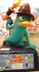 菊池隆志 公式ブログ/『カモノハシ!?( ゜_゜) 』 画像1