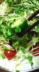 菊池隆志 公式ブログ/『サラダ実食♪(  ̄▽ ̄*)』 画像1