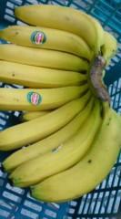 菊池隆志 公式ブログ/『バナナぁ♪(  ̄▽ ̄)』 画像2