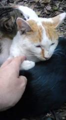 菊池隆志 公式ブログ/『猫枕!?o(^-^)o 』 画像2