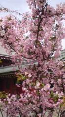 菊池隆志 公式ブログ/『浅草寺からのぉ♪o(^-^)o 』 画像1