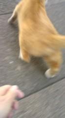 菊池隆志 公式ブログ/『手強い!?o(^-^)o 』 画像2