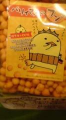 菊池隆志 公式ブログ/『バリィさんのフン!?o(^-^)o 』 画像2