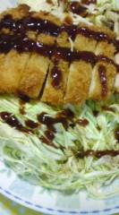 菊池隆志 公式ブログ/『チキンかつチーズ入り♪』 画像1