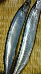 菊池隆志 公式ブログ/『秋刀魚♪o(^-^)o 』 画像1