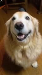 安西早来 公式ブログ/A HAPPY NEW YEAR 画像1