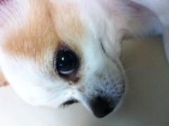 朝生あや 公式ブログ/可愛すぎる! 画像2