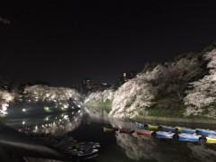 達淳一 公式ブログ/桜満開 画像1