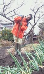 秋吉久美子 公式ブログ/芋の種付け 画像1