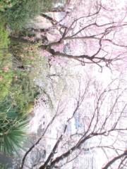 秋吉久美子 公式ブログ/元気になろうね 画像1
