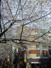前田幸長 プライベート画像 2011-04-07 12:27:43