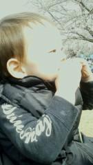 伊藤竜翼 公式ブログ/桜食われる 画像3