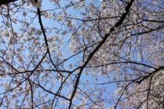 金原杏奈 公式ブログ/お久しぶりです!! 画像3