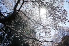 金原杏奈 公式ブログ/お久しぶりです!! 画像2