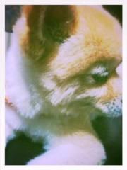 青木ケイト 公式ブログ/スタイルチェンジ。 画像2