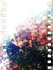 青木ケイト 公式ブログ/スタイルチェンジ。 画像3