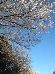 果山サキ 公式ブログ/春ちゃん 画像1