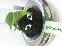 果山サキ 公式ブログ/ロッケンロール!! 画像1