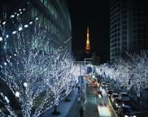加來沙耶香 公式ブログ/皆さーん12月といえば…(-Д-`)? 画像1