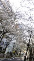 長島実咲 公式ブログ/この季節(^O^)! 画像1