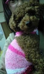 長島実咲 公式ブログ/りぼんのお洋服 画像1