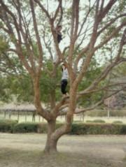 金籐清花  公式ブログ/ 木登りとテクニック(笑)♪ 画像2