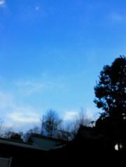 金籐清花  プライベート画像/幸せな景色 2011-01-17 16:25:08