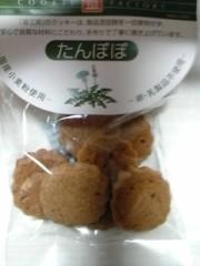 木戸美歩 公式ブログ/たんぽぽ食べました♪ 画像1