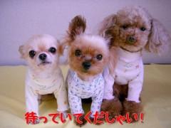木戸美歩 公式ブログ/作ります! 画像1