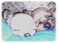 木戸美歩 公式ブログ/腕枕♪ 画像1