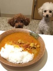 木戸美歩 公式ブログ/カレー 画像1