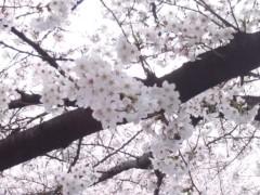 木戸美歩 公式ブログ/整体 画像2