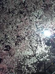 木戸美歩 公式ブログ/お花見とドッグカフェ 画像3
